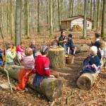 森の幼稚園1